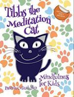 Tibbs the Meditation Cat