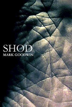 Bog, paperback Shod af Mark Goodwin