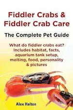 Fiddler Crabs & Fiddler Crab Care. Complete Pet Guide. What do fiddler crabs eat? Includes habitat, facts, aquarium tank setup, molting, food, personality & pictures
