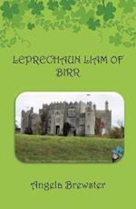 Leprechaun Liam of Birr