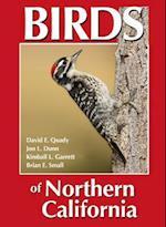 Birds of Northern California