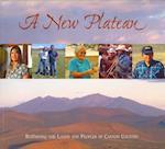 A New Plateau