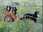 A Birth Day for Hannah (Mountain Dog Books)