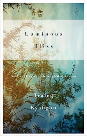 Bog, paperback Luminous Bliss af Traleg Kyabgon