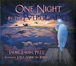 One Night in the Everglades (The Long-Term Ecological Research Network Series)
