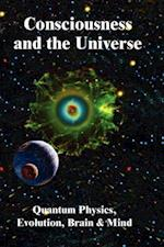 Consciousness and the Universe