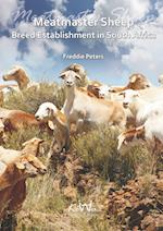Meatmaster Sheep: Breed Establishment in South Africa