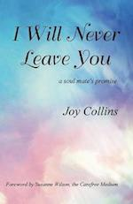 I Will Never Leave You: a soul mate's promise