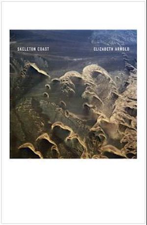 Bog, paperback Skeleton Coast af Elizabeth Arnold