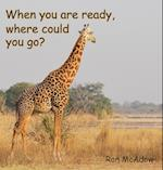 When You Are Ready, Where Could You Go?