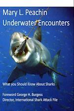 Underwater Encounters