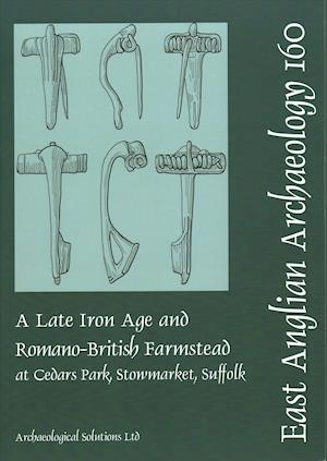 Bog, paperback EAA 160 A Late Iron Age and Romano-British Farmstead at Cedars Park, Stowmarket, Suffolk af Kate Nicholson