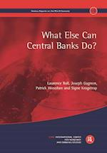 What Else Can Central Banks Do? (Geneva Reports on the World Economy)
