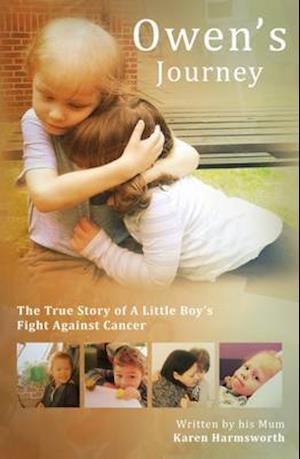 Bog, hardback Owen's Journey af Karen Harmsworth