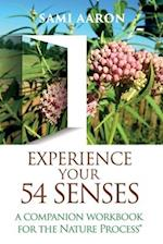 Experience Your 54 Senses
