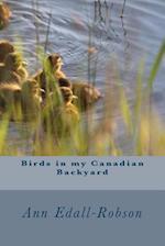 Birds in My Canadian Backyard