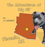 The Adventures of Big Sil Phoenix