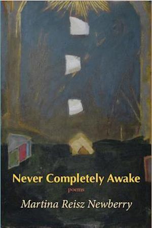 Bog, paperback Never Completely Awake af Martina Reisz Newberry