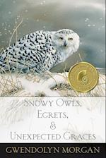 Snowy Owls, Egrets, and Unexpected Graces af Gwendolyn Morgan