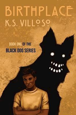 Bog, paperback Birthplace af K. S. Villoso