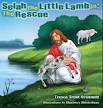 Selah the Little Lamb in (Selah the Little Lamb in, nr. 1)