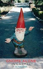 Gnome Alone in Carmel