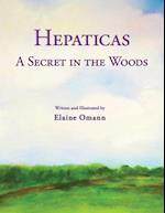 Hepaticas: A Secret in the Woods