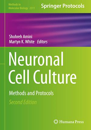 Neuronal Cell Culture