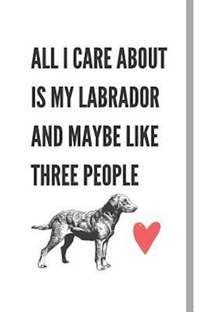 All I Care About Is My Labrador And Maybe Like Three People