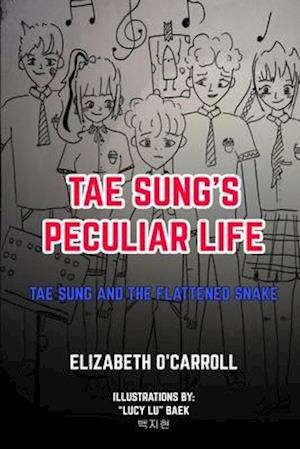 Tae Sung's Peculiar Life