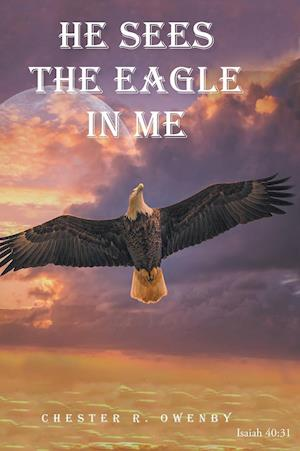 He Sees the Eagle in Me