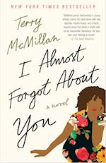 I Almost Forgot About You (A Novel)
