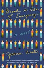 Break in Case of Emergency (Vintage Contemporaries)