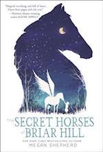 The Secret Horses of Briar Hill af Megan Shepherd