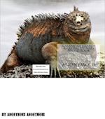 Galapagos Islands Amazing Animals Photo book