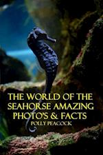 World of The Seahorse Amazing Photography and Facts