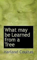What May Be Learned from a Tree af Harland Coultas