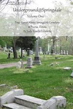 Underground@springdale Volume I af Judy Rosella Edwards