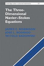 The Three-Dimensional Navier-Stokes Equations af James C. Robinson