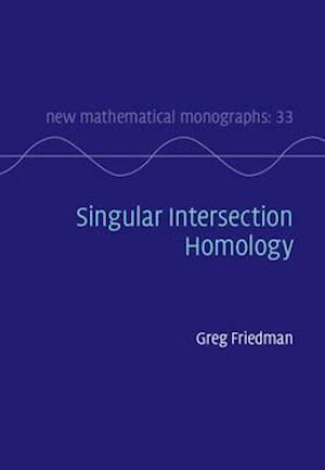 Singular Intersection Homology