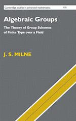 Algebraic Groups (CAMBRIDGE STUDIES IN ADVANCED MATHEMATICS, nr. 170)