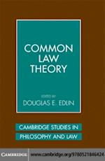 Common Law Theory (CAMBRIDGE STUDIES IN PHILOSOPHY AND LAW)