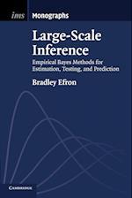 Large-Scale Inference af Bradley Efron