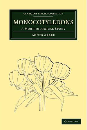 Monocotyledons: A Morphological Study