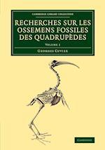Recherches sur les Ossemens Fossiles des Quadrupedes af Georges Cuvier