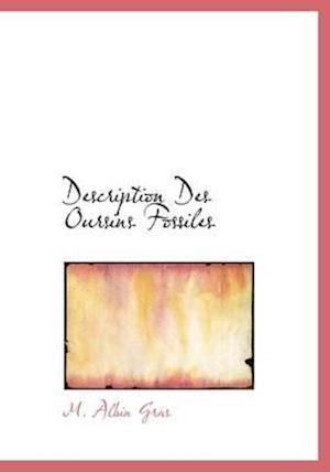 Description Des Oursins Fossiles
