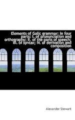 Elements of Galic Grammar