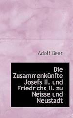 Die Zusammenkunfte Josefs II. Und Friedrichs II. Zu Neisse Und Neustadt af Adolf Beer