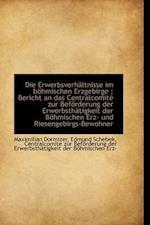 Die Erwerbsverhältnisse im böhmischen Erzgebirge : Bericht an das Centralcomité zur Beförderung der