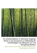 Die Erwerbsverh Ltnisse Im B Hmischen Erzgebirge